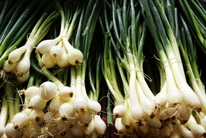 Vegetables in season and what to do with them: Beetroot and Spring Onion