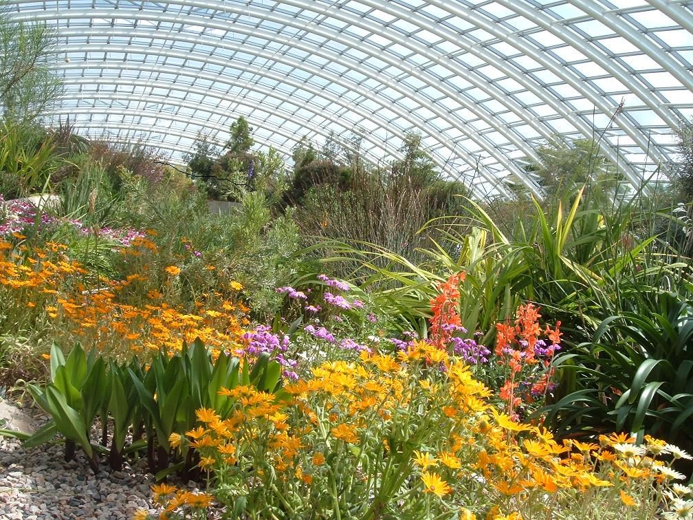 The Great Glasshouse, picture credited to The National Botanic Garden of Wales